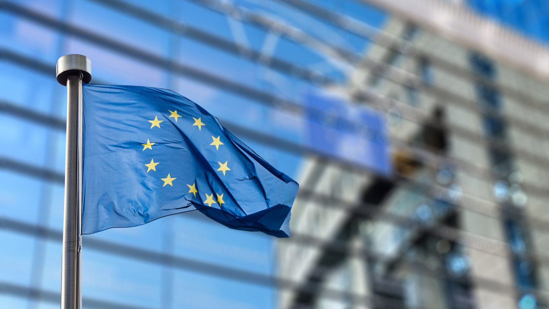 European Union: Steuerhinterziehung